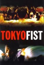 Tokyo Fist (1995) afişi