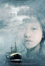 True North (2006) afişi