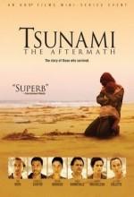 Tsunami Felaketin Ardından