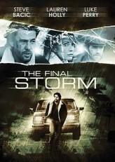 The Final Storm (2010) afişi