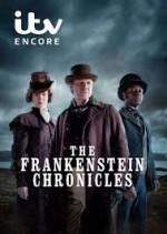 The Frankenstein Chronicles (2015) afişi