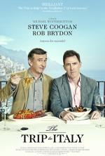 İtalya'ya Yolculuk (2014) afişi