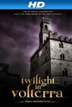 Twilight in Volterra (2013) afişi
