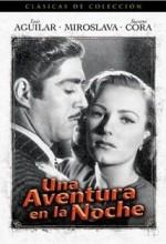 Una Aventura En La Noche (1948) afişi
