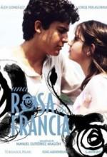 Una Rosa De Francia (2006) afişi