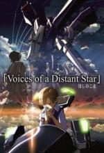 Yıldızın Sesi