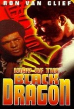 Way Of The Black Dragon (1978) afişi