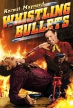 Whistling Bullets (1937) afişi