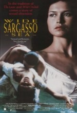 Wide Sargasso Sea (1993) afişi