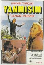 Yanmışım (1979) afişi