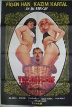 Yaz Deftere (1979) afişi