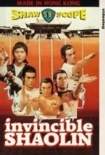 Yenilmez Shaolin (1978) afişi