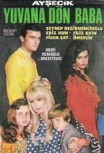 Yuvana Dön Baba (1968) afişi