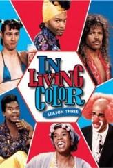 Yaşamın Renkleri Sezon 3 (1992) afişi