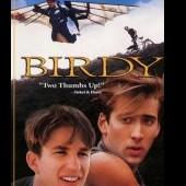 birdy1907