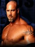 Bill Goldberg profil resmi
