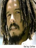 Rohan Marley profil resmi