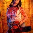 The Chainsaw Sally Show Resimleri