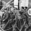 Cezayir Bağımsızlık Savaşı Resimleri