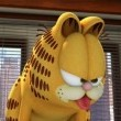 Garfield Geri Dönüyor Resimleri