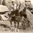 Stallion Canyon Resimleri