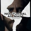 Gece Hayvanları Resimleri
