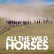 All the Wild Horses  Resimleri