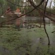 Lake Placid 2 Resimleri