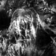 Beast From Haunted Cave Resimleri