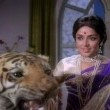 Lal Patthar Resimleri