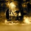 Riddick Resimleri