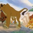 Aslan Kral 2: Simbanın Onuru Resimleri