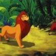 Aslan Kral 3 Resimleri