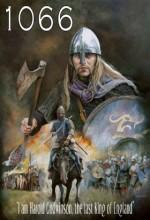 1066 (2010) afişi