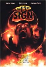 13. İşaret (2000) afişi