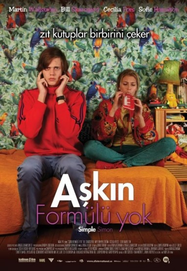 Aşkın Formülü Yok (2010) afişi