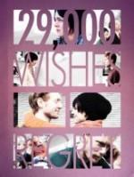 29000 Wishes. 1 Regret (2012) afişi