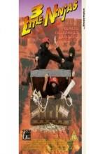 3 Küçük Ninja ve Kayıp Hazine (1990) afişi