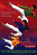 3 Ninjas Kick Back (1994) afişi