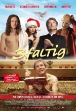 3-faltig (2010) afişi