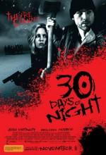 30 Gün Gece (2007) afişi