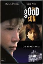 İyi Evlat (1993) afişi