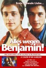 A Cause D'un Garçon (2002) afişi