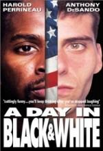 A Day In Black And White (1999) afişi