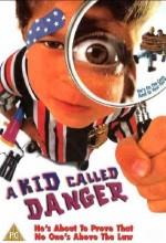 A Kid Called Danger (1999) afişi