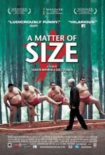 A Matter Of Size (2009) afişi
