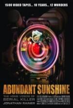 Abundant Sunshine (2009) afişi