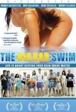 Acemi Yüzücüler (2006) afişi