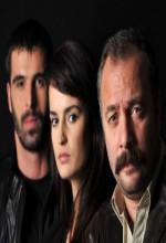 Adanalı (2009) afişi