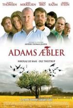 Adem'in Elmaları (2005) afişi